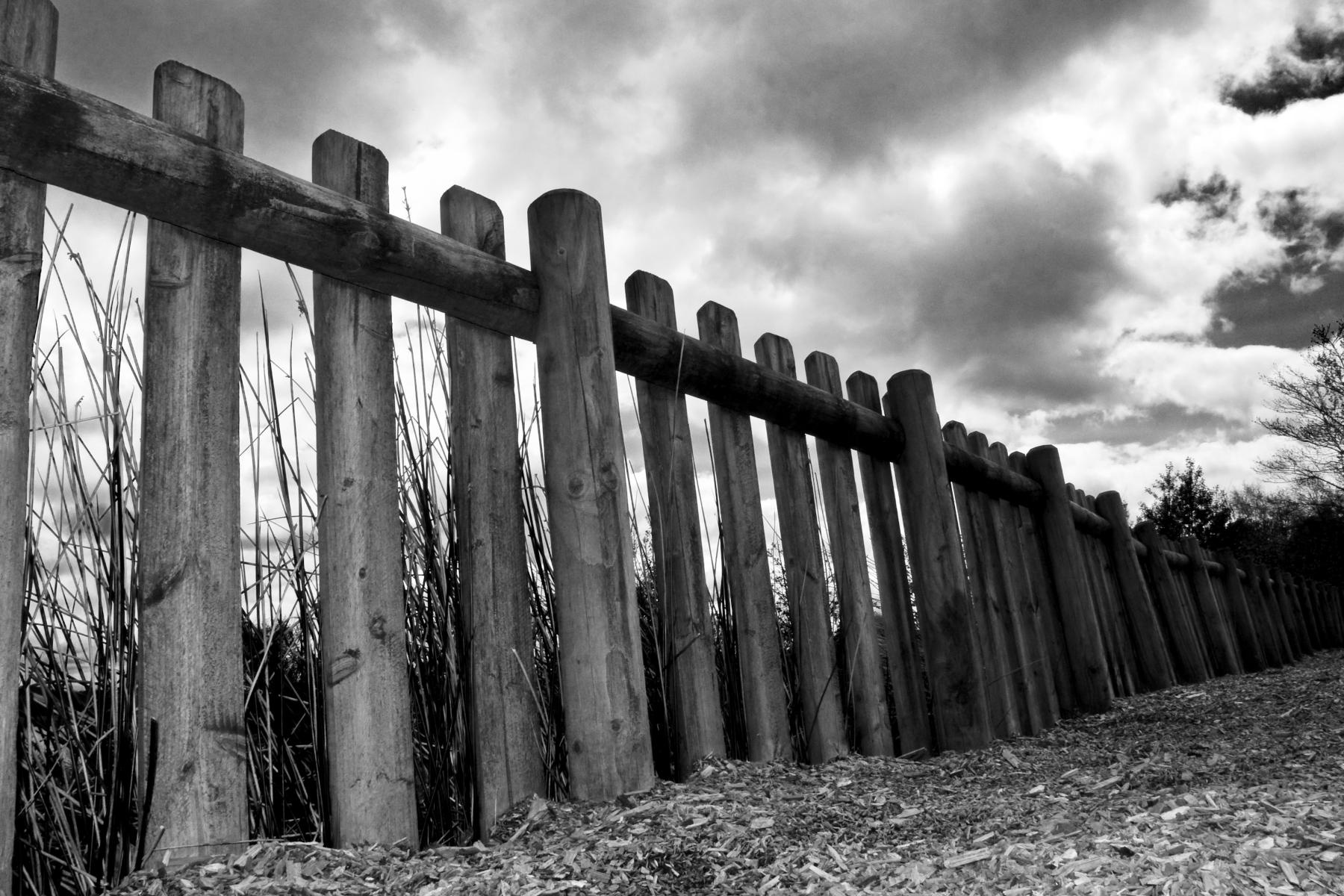 Fence at Llyn Brenig